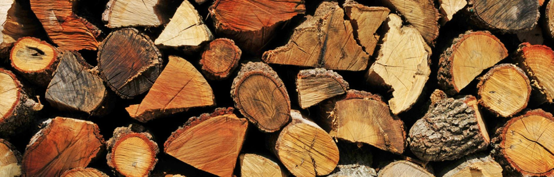 Comment Faire Un Bucher En Bois construire un abri pour le bois