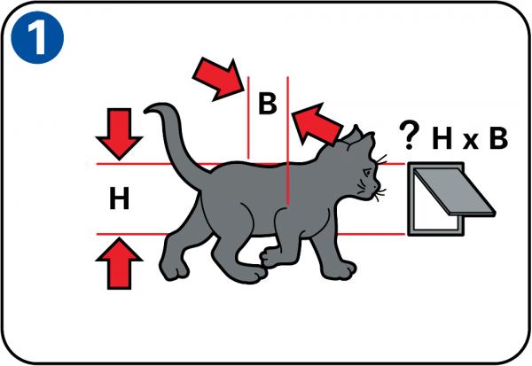 pour que le chat puisse entrer et sortir librement la chatire doit tre la bonne hauteur on la pose en gnral une quinzaine