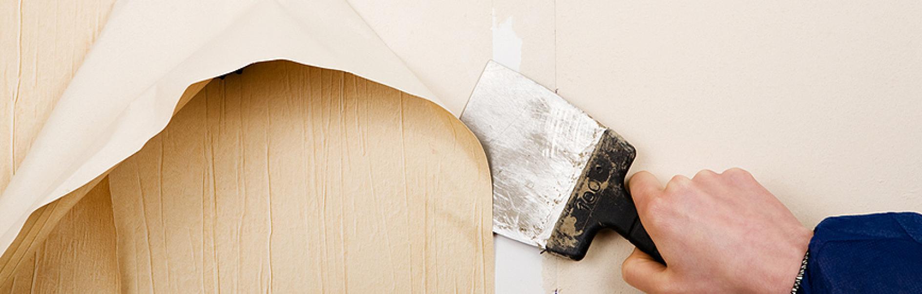 Spatule Décoller Papier Peint décoller du papier peint